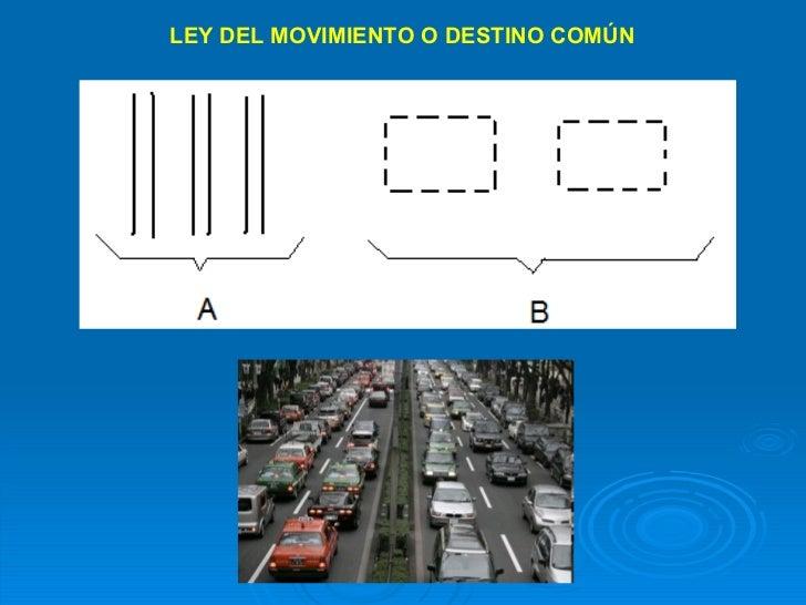 LEY DEL MOVIMIENTO O DESTINO COMÚN