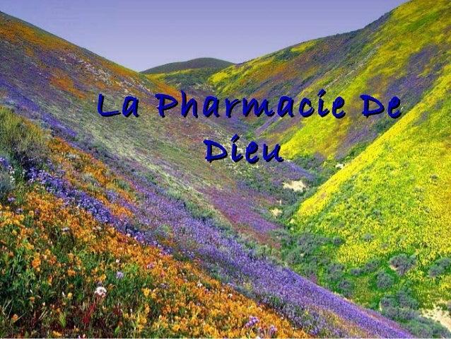 La Pharmacie DeLa Pharmacie DeDieuDieu