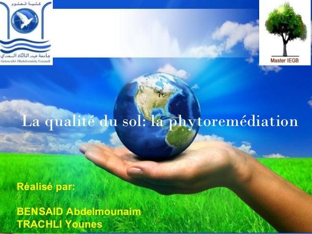 La qualité du sol: la phytoremédiation  Réalisé par:  BENSAID Abdelmounaim  TRACHLI Younes  Pour plus de modèles : Modèles...