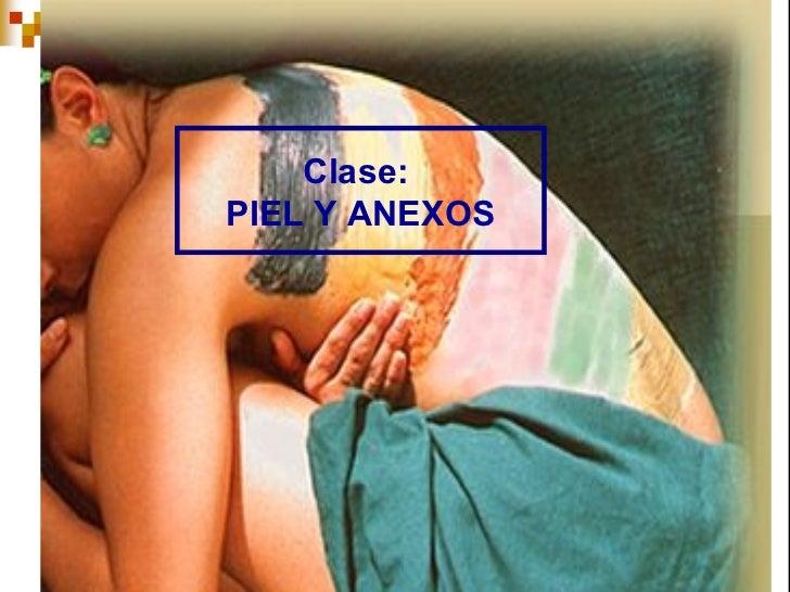 Clase:PIEL Y ANEXOS                1