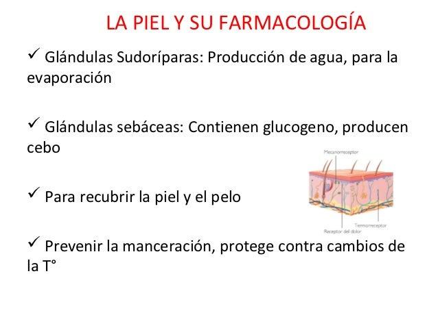 LA PIEL Y SU FARMACOLOGÍA Glándulas Sudoríparas: Producción de agua, para laevaporación Glándulas sebáceas: Contienen gl...