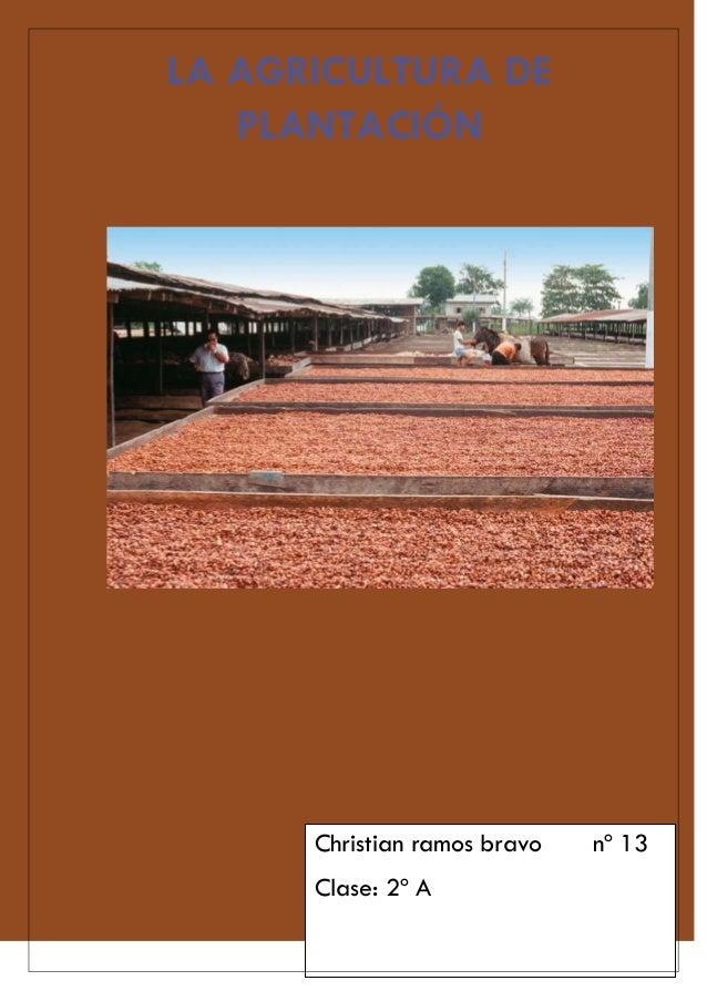 LA AGRICULTURA DE   PLANTACIÓN      Christian ramos bravo   nº 13      Clase: 2º A