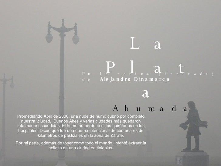 La Plata   Ahumada En la retina (irritada) de  Alejandro Dinamarca Promediando Abril de 2008, una nube de humo cubrió por ...