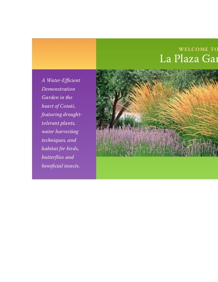 w e l c o m e to                      La Plaza GardenA Water-EfficientDemonstrationGarden in theheart of Cotati,featuring ...