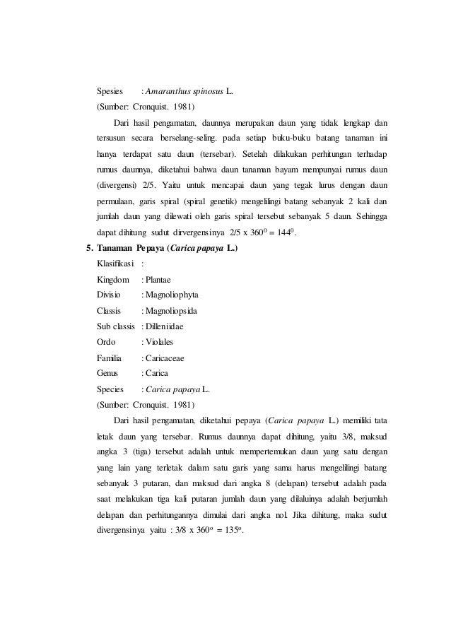 Laporan praktikum 3 tata letak daun rumus daun dan diagram daun morf amaranthus 14 ccuart Image collections