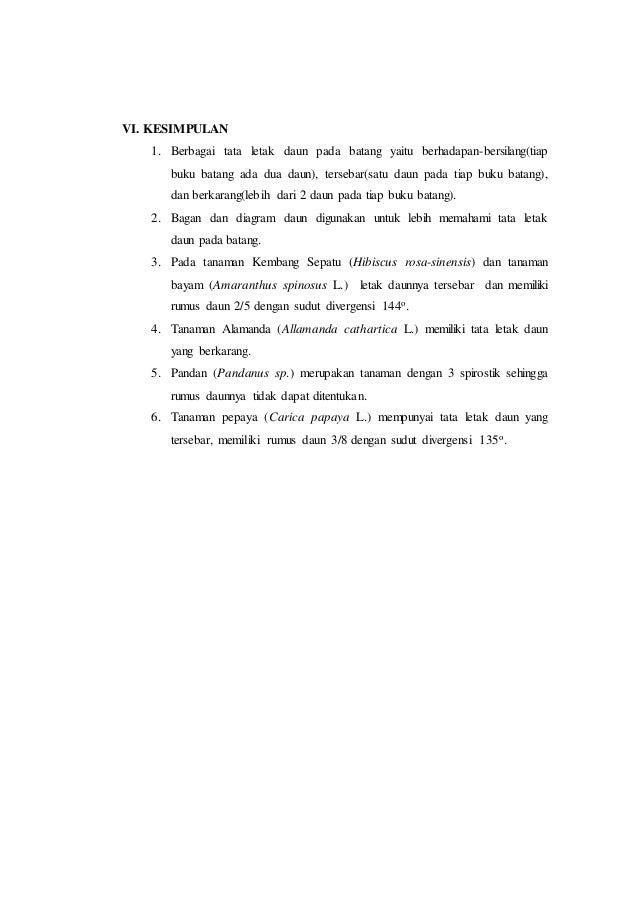 Laporan praktikum 3 tata letak daun rumus daun dan diagram daun morf 15 ccuart Choice Image