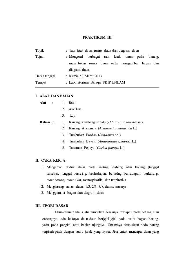 Laporan praktikum 3 tata letak daun rumus daun dan diagram daun morf laporan praktikum 3 tata letak daun rumus daun dan diagram daun morfologi tumbuhan ccuart Image collections