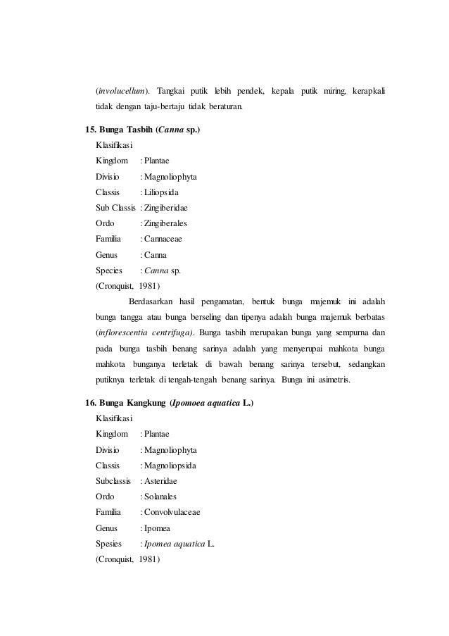 Laporan praktikum 6 bunga majemuk morfologi tumbuhan 26 ccuart Gallery
