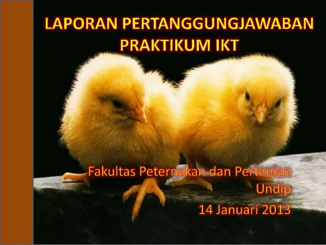 KELOMPOK VIIB•   Lita anistya        23010110120047•   Eka Septiadi        23010110120086•   Denny praditya m    230101101...