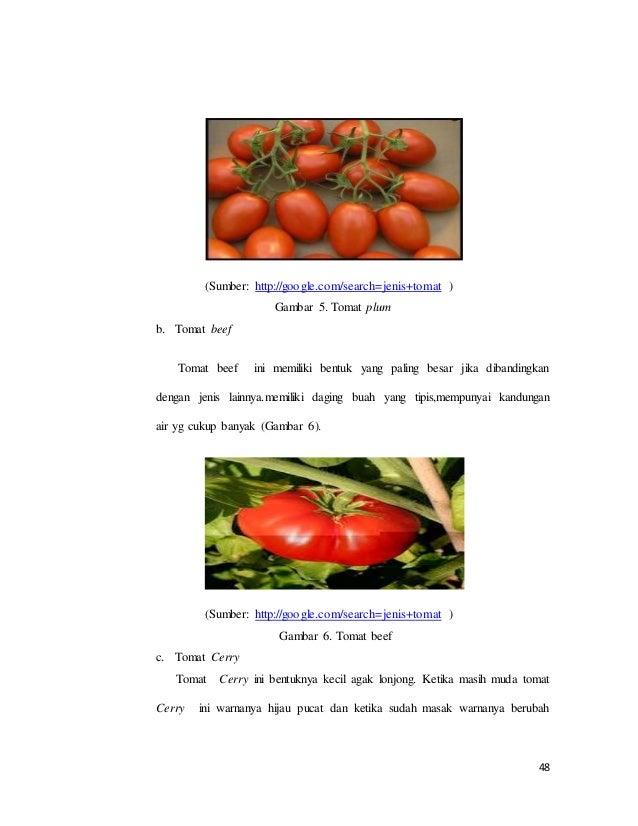 Laporan pkl yuk piks 2 48 ccuart Images