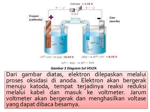 Contoh Diagram Sel Gallery How To Guide And Refrence