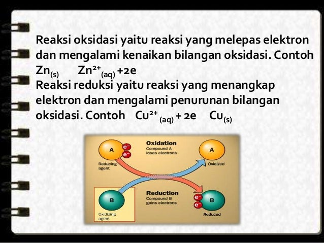 Contoh Diagram Sel Image Collections How To Guide And Refrence
