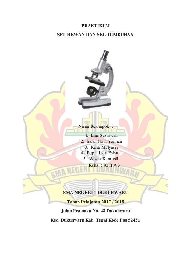 Laporan Praktikum Mikroskop
