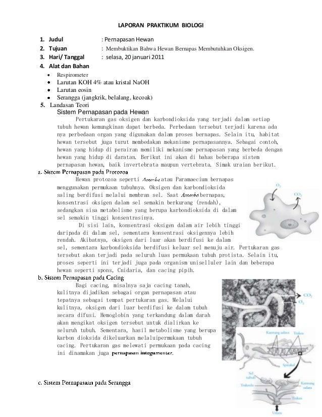 Laporan Praktikum Biologi Pernapasan