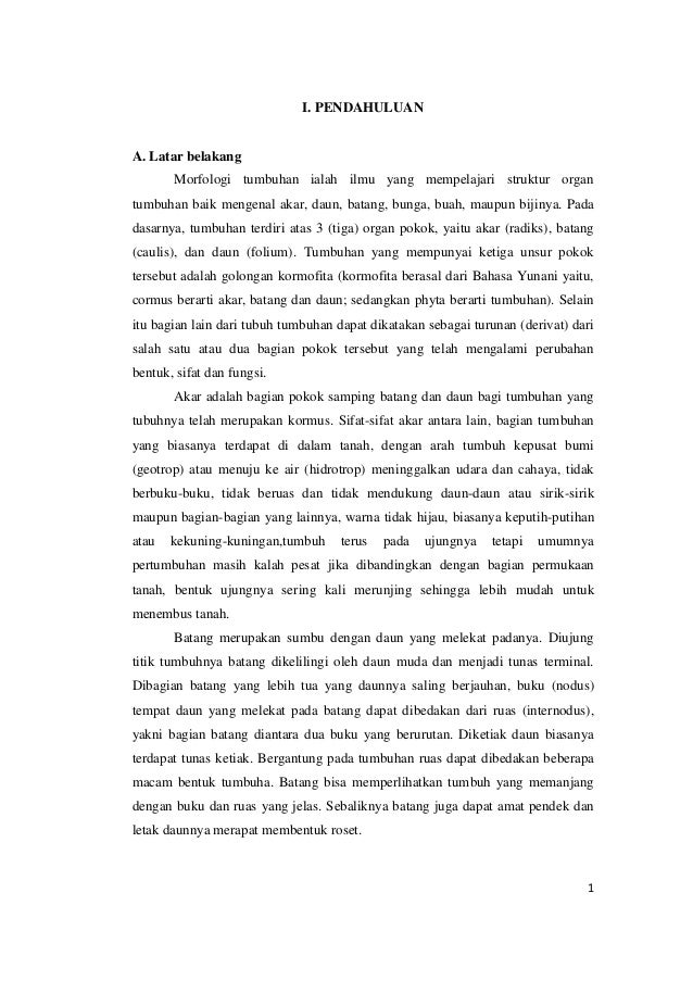 Laporan Praktikum Morfologi Tumbuhan Limited Edition