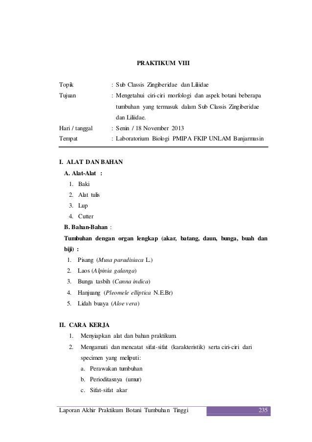 Contoh Laporan Praktikum Morfologi Tumbuhan Pdf