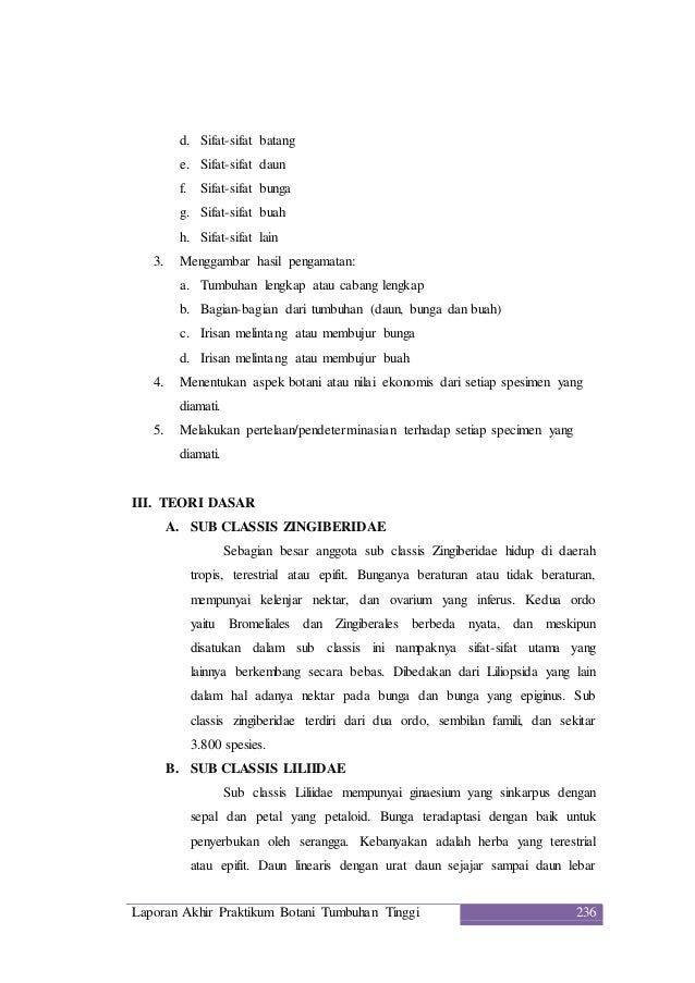 Laporan Praktikum Botani Tumbuhan Tinggi 8 Sub Classis Zingiberidae D