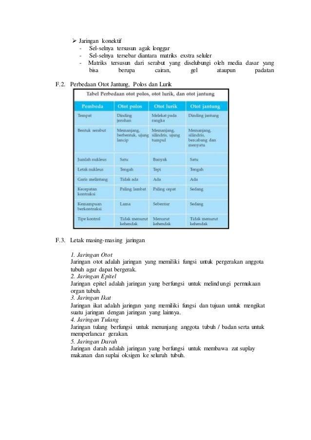 Laporan Praktikum Tentang Jaringan Hewan