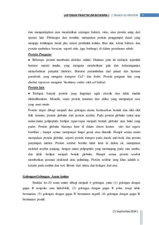 Laporan Praktikum Uji Protein Dg Uji Biuret