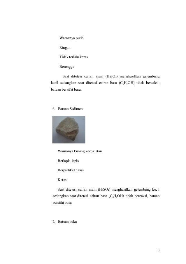 Contoh Laporan Identifikasi Batuan Beku Police 11166