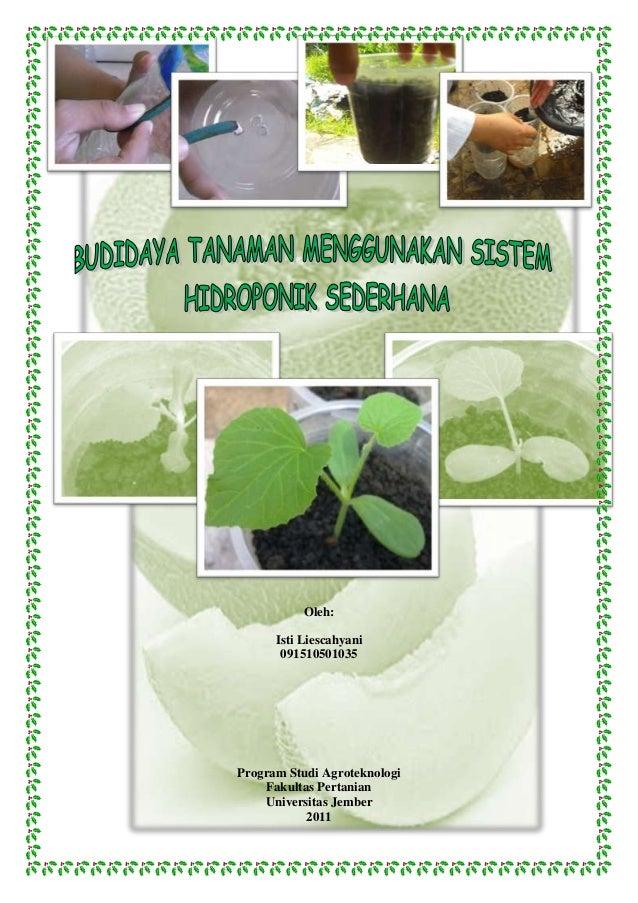 Oleh:Isti Liescahyani091510501035Program Studi AgroteknologiFakultas PertanianUniversitas Jember2011
