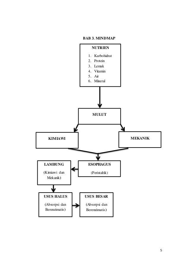 Laporan Tutorial Fisiologi Sistem Pencernaan