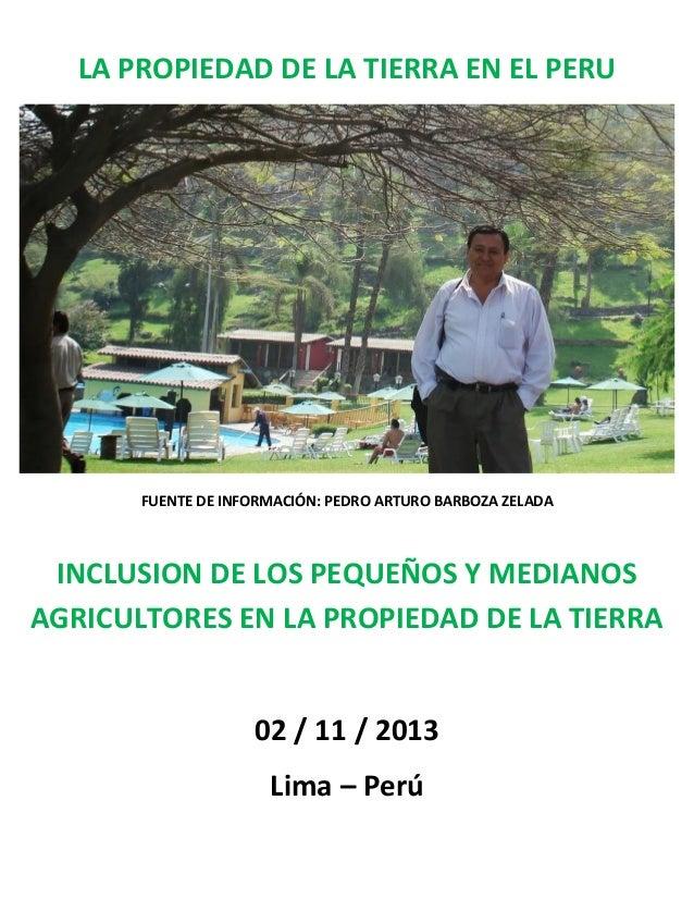 LA PROPIEDAD DE LA TIERRA EN EL PERU  FUENTE DE INFORMACIÓN: PEDRO ARTURO BARBOZA ZELADA  INCLUSION DE LOS PEQUEÑOS Y MEDI...