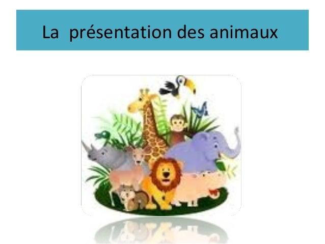 La présentation des animaux