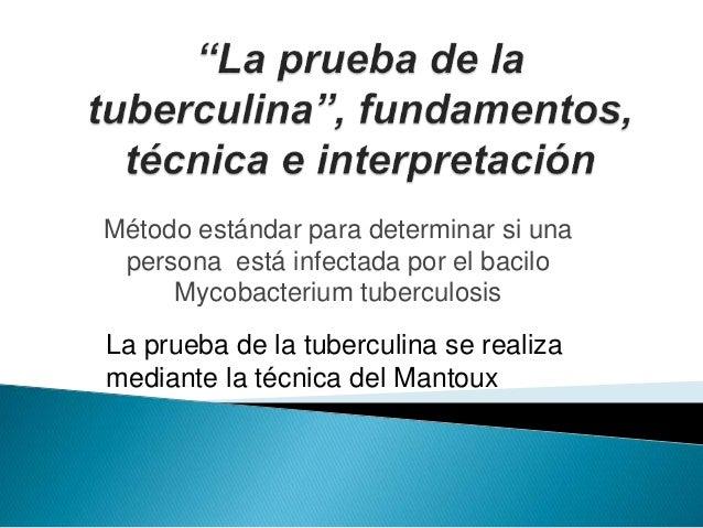 Método estándar para determinar si una persona está infectada por el bacilo Mycobacterium tuberculosis La prueba de la tub...