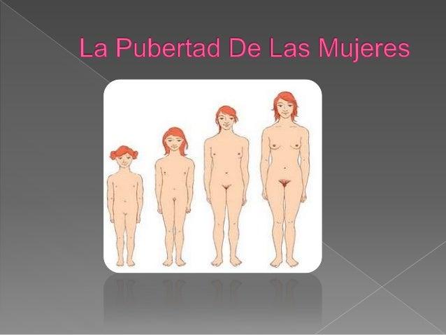  En la pubertad de las niñas y los niños la hormona dominante en su desarrollo es  el estradiol un estrógeno. Mientras el...