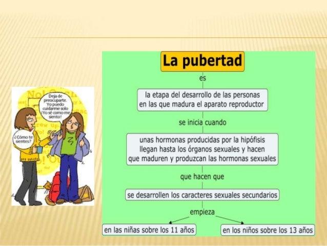  En la pubertad se lleva a cabo el proceso de cambios físicos en el cual el cuerpo del niño o niña se convierte en adoles...