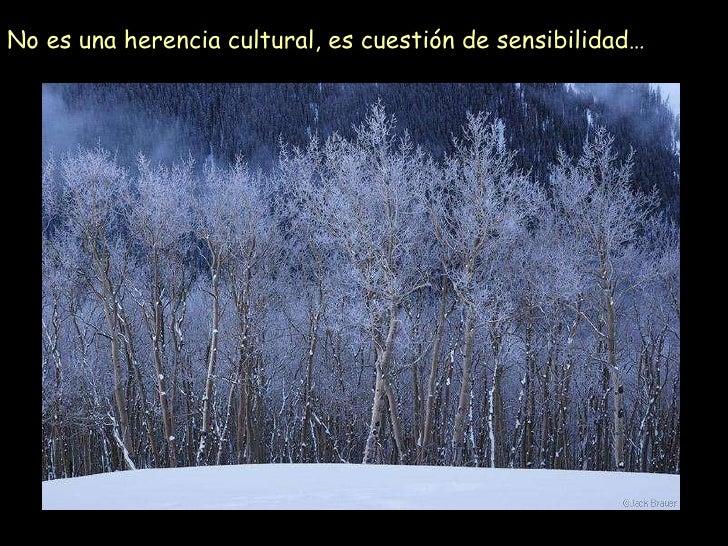 No es una herencia cultural, es cuestión de sensibilidad…