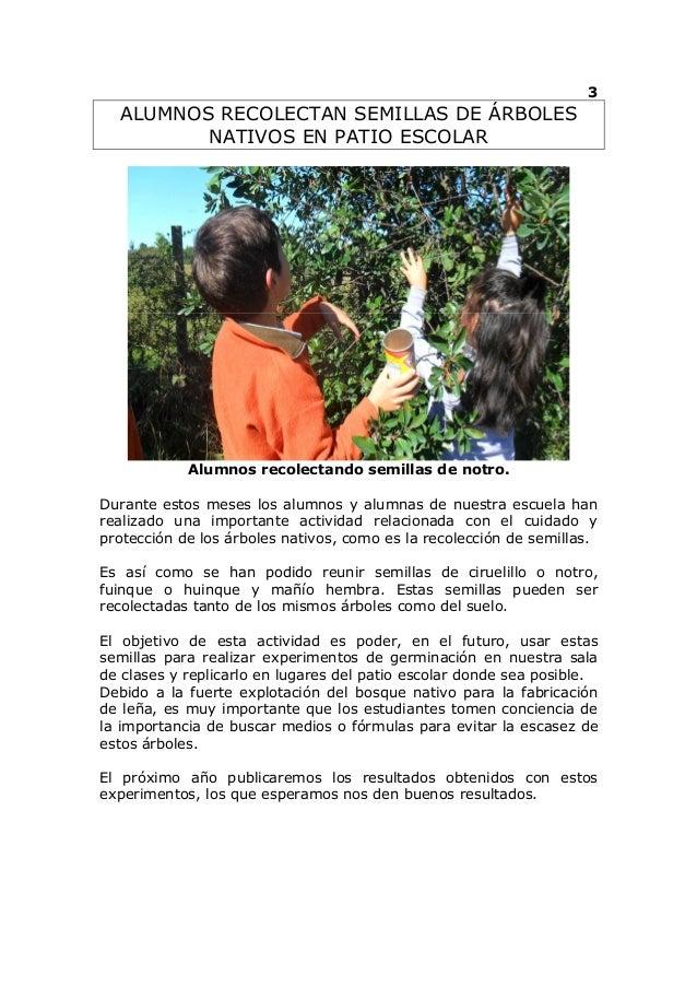 La quilla ecologica  agosto del 2012 Slide 3