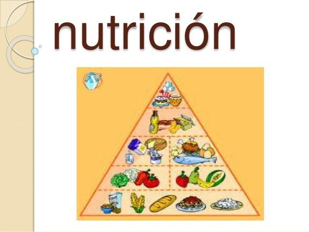 La quimica de nutricion for La quimica en la gastronomia