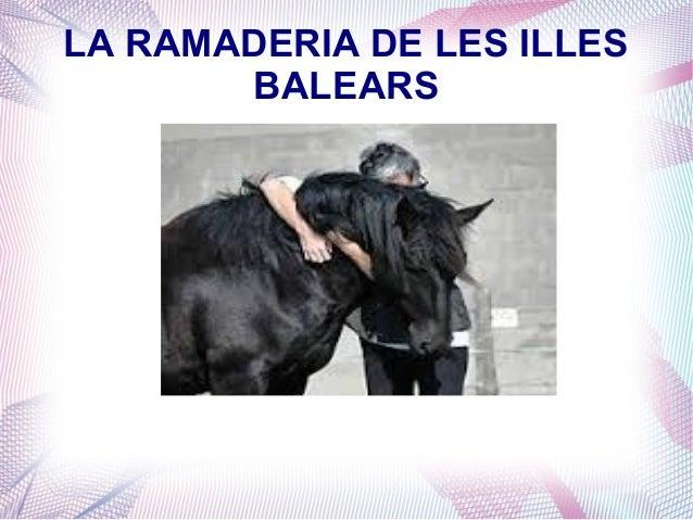 LA RAMADERIA DE LES ILLES BALEARS