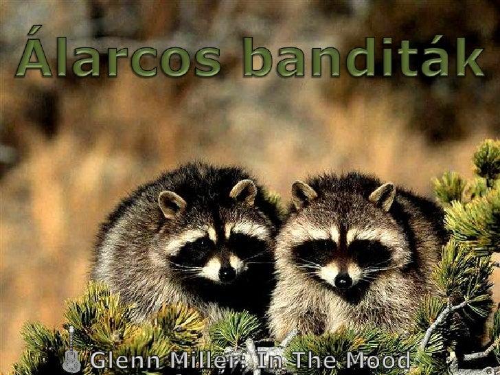 Álarcos banditák<br />Glenn Miller: In The Mood<br />