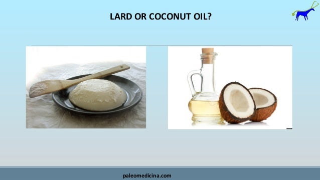 LARD OR COCONUT OIL? paleomedicina.com