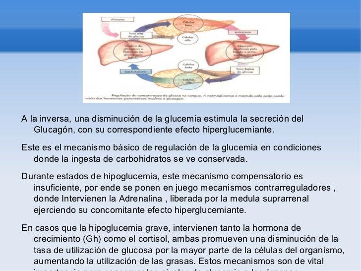 La regulacion hormonal