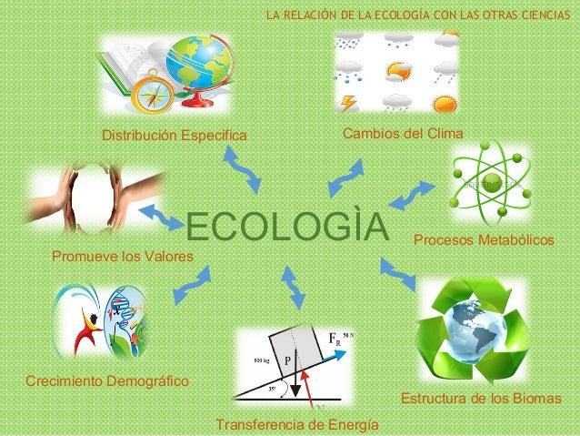 La relación de la ecología con las otras ciencias Slide 2