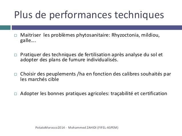 Plus de performances techniques  Maitriser les problèmes phytosanitaire: Rhyzoctonia, mildiou, galle….  Pratiquer des te...