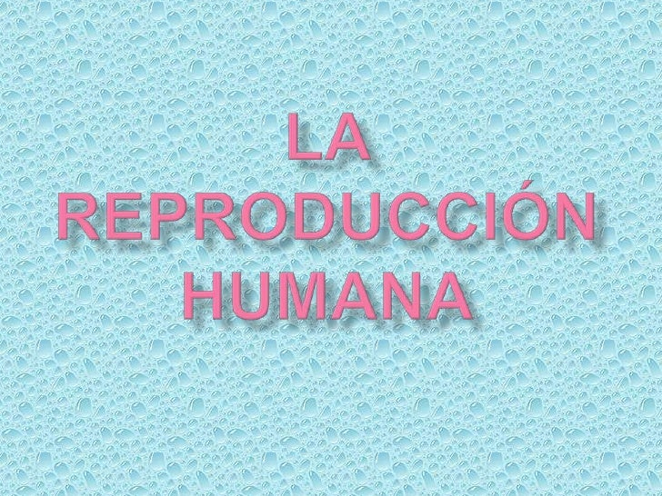    Introducción.   La edad óptima de reproducción.   Proceso de la reproducción    -Ovulación y fecundación.    -Proble...