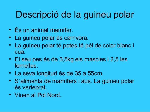 La reproducció de la guineu polar Slide 2