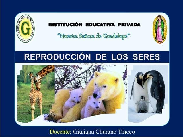 INSTITUCIÓN EDUCATIVA PRIVADA  Docente: Giuliana Churano Tinoco