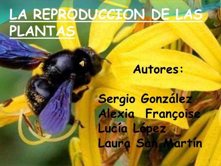 LA REPRODUCCION DE LASPLANTAS               Autores:          Sergio González          Alexia Françoise          Lucía Lóp...