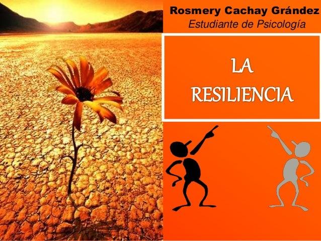 Rosmery Cachay Grández Estudiante de Psicología