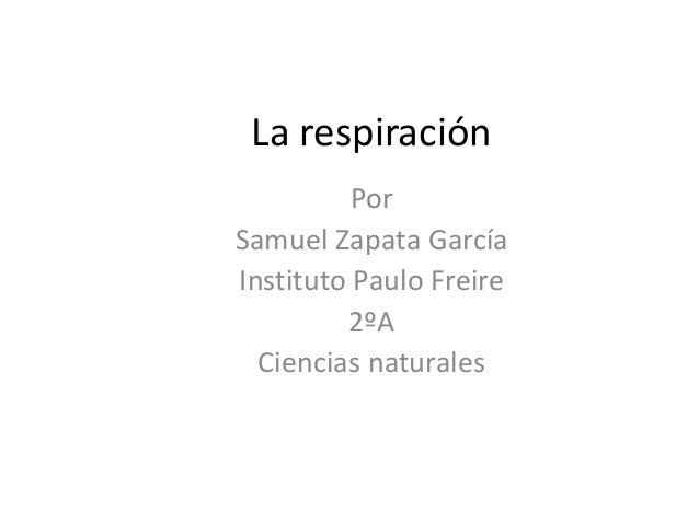 La respiración Por Samuel Zapata García Instituto Paulo Freire 2ºA Ciencias naturales