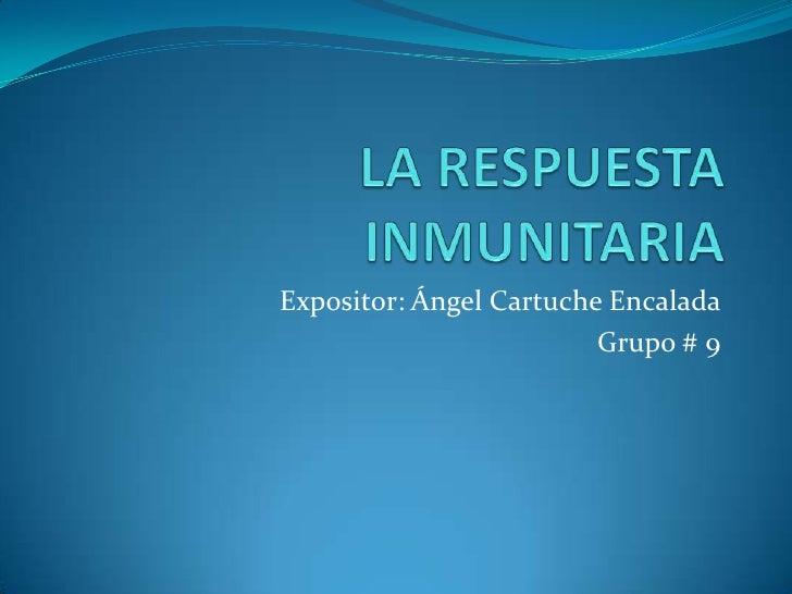 LA RESPUESTA INMUNITARIA<br />Expositor: Ángel Cartuche Encalada<br />Grupo # 9<br />