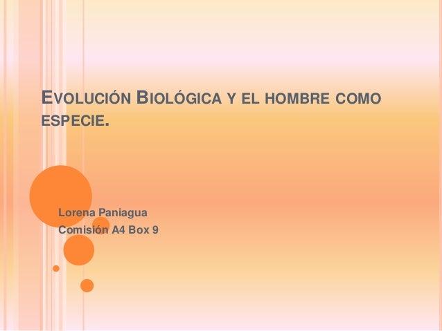 EVOLUCIÓN BIOLÓGICA Y EL HOMBRE COMO ESPECIE. Lorena Paniagua Comisión A4 Box 9