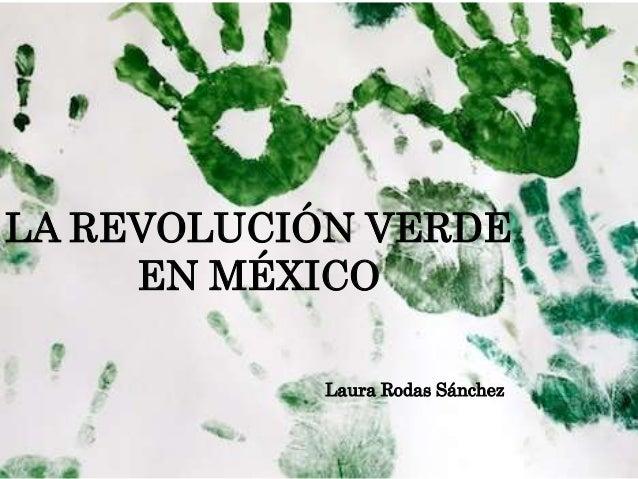 Laura Rodas Sánchez LA REVOLUCIÓN VERDE EN MÉXICO