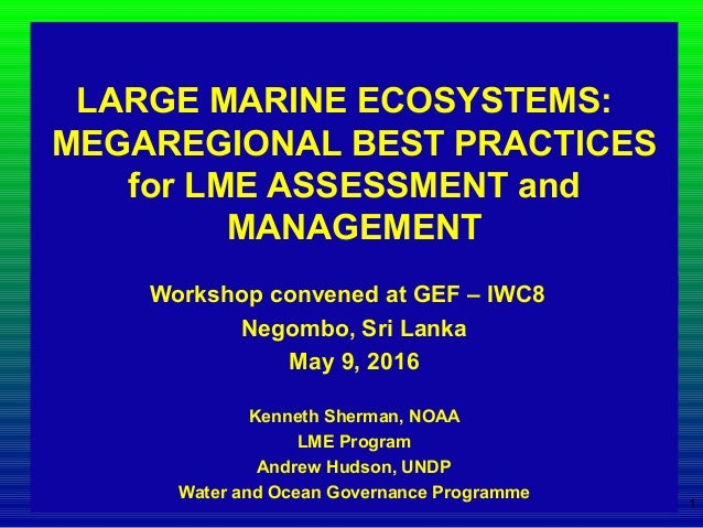 LARGE MARINE ECOSYSTEMS: MEGAREGIONAL BEST PRACTICES for LME ASSESSMENT and MANAGEMENT Workshop convened at GEF – IWC8 Neg...